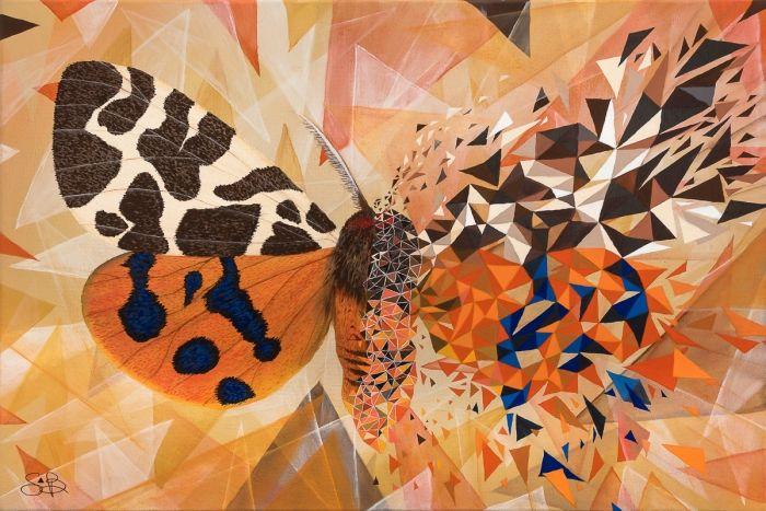 Butterfly Effect Jaspe